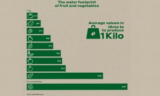 The water footprint of fruits and vegetables.